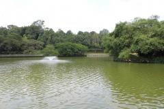 Botanischer Garten Wasserfontäne