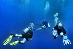 Sharm El Naga - Tauchen 05