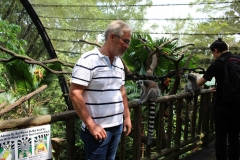 Singapur Zoo 12