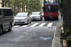 Tokio - Hop-on Hop-off Bus (außen)