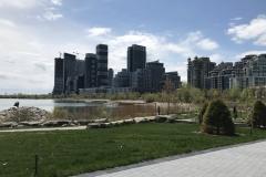 Toronto - Sonne 03