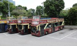 Hop-On Hop-Off Bus Singapur