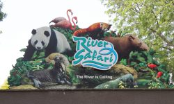 River Safari - Singapur Zoo