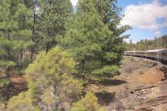 Grand Canyon Railway - Hinfahrt zum South Rim