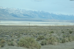 Death Valley - Panamint Springs Los Angeles 004