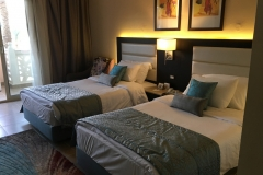 Albatros Palace Resort - Zimmer 01