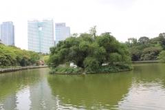 Botanischer Garten Wasserfontäne 00