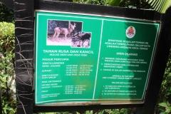 Kuala Lumpur Deer Park 01