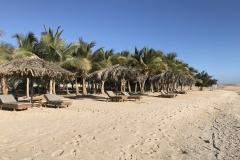 Mangrove-Bay-Resort-Strand-02