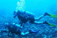Sharm El Naga - Tauchen 07